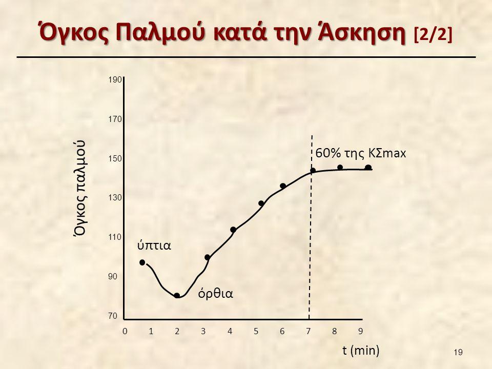 Όγκος Παλμού κατά την Άσκηση Όγκος Παλμού κατά την Άσκηση [2/2] 190 170 150 130 110 90 70 0 1 2 3 4 5 6 7 8 9 t (min) Όγκος παλμού ύπτια όρθια 60% της ΚΣ max 19