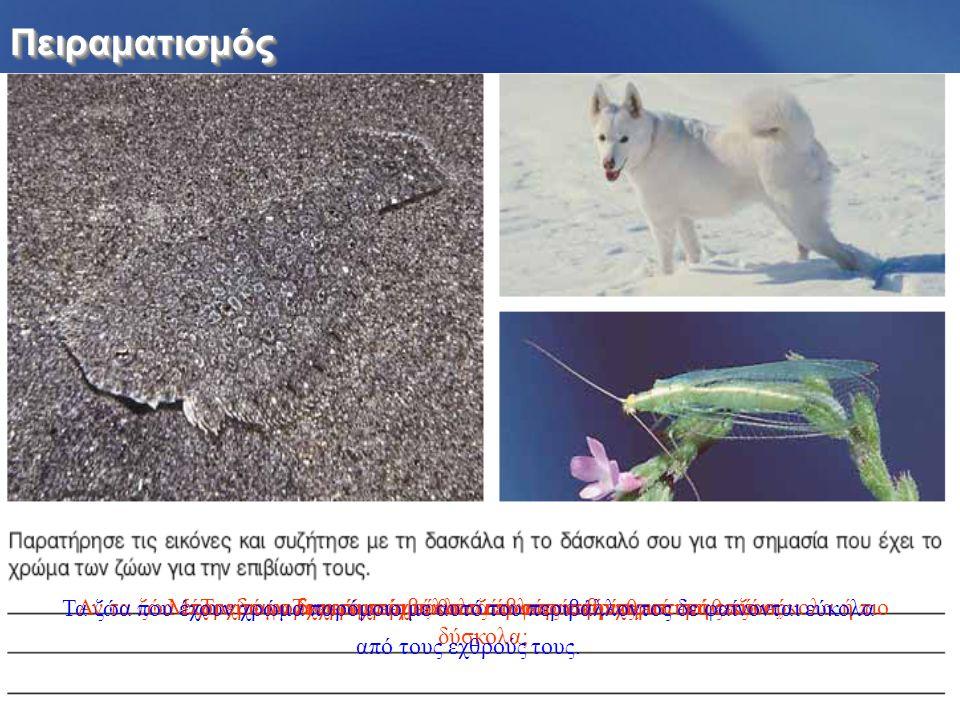 ΠειραματισμόςΠειραματισμός Τι χρώμα έχουν τα ζώα στις εικόνες;Τι χρώμα έχει το περιβάλλον στο οποίο βρίσκεται κάθε ζώο;Μπορείτε να διακρίνεται εύκολα