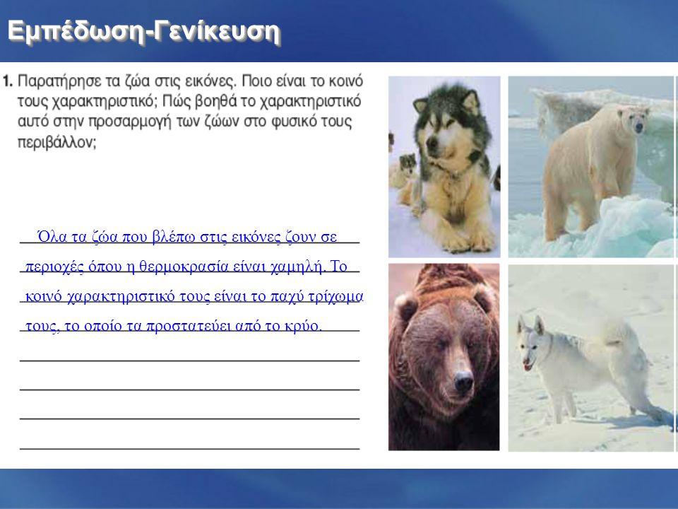 Όλα τα ζώα που βλέπω στις εικόνες ζουν σε περιοχές όπου η θερμοκρασία είναι χαμηλή.