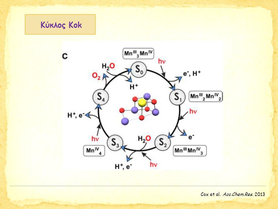 Κύκλος Κοk Cox et al. Acc.Chem.Res. 2013