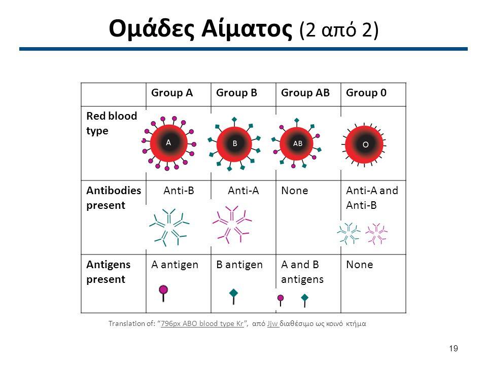 Ομάδες Αίματος (2 από 2) Group AGroup BGroup ABGroup 0 Red blood type Antibodies present Anti-BAnti-ANoneAnti-A and Anti-B Antigens present A antigenB