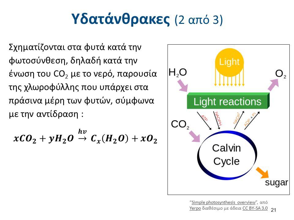"""Υδατάνθρακες (2 από 3) """"Simple photosynthesis overview"""", από Yerpo διαθέσιμο με άδεια CC BY-SA 3.0Simple photosynthesis overview YerpoCC BY-SA 3.0 21"""