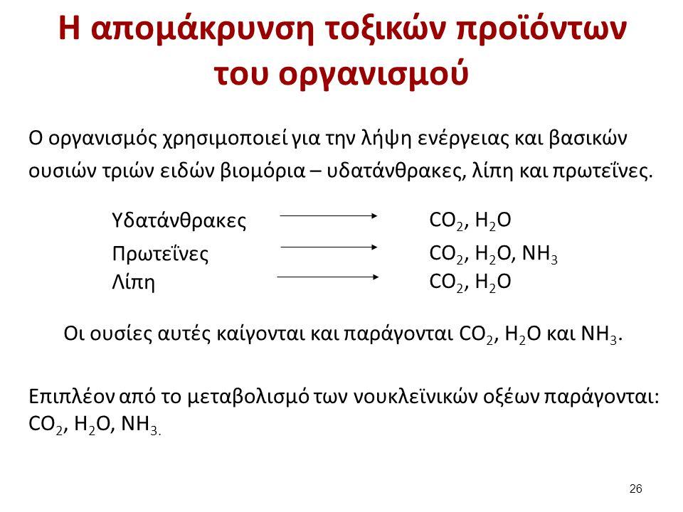 H απομάκρυνση τοξικών προϊόντων του οργανισμού Ο οργανισμός χρησιμοποιεί για την λήψη ενέργειας και βασικών ουσιών τριών ειδών βιομόρια – υδατάνθρακες