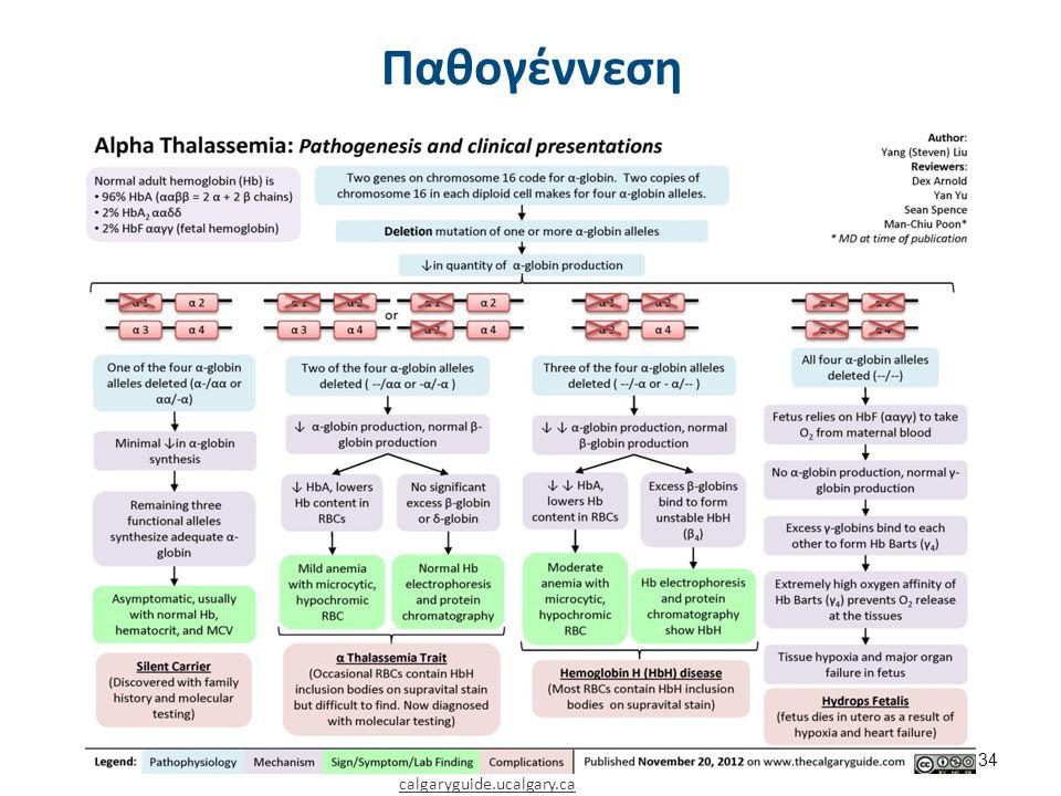 Παθογέννεση calgaryguide.ucalgary.ca 34