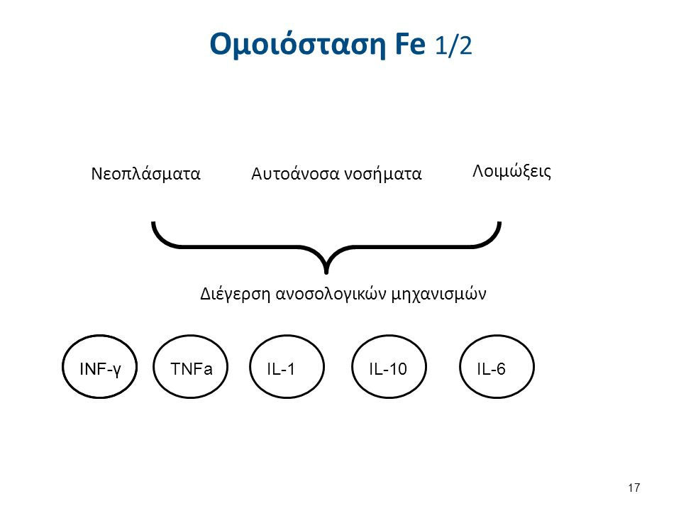 ΝεοπλάσματαΑυτοάνοσα νοσήματα Λοιμώξεις Διέγερση ανοσολογικών μηχανισμών INF-γ TNFaIL-1IL-10IL-6 Ομοιόσταση Fe 1/2 17