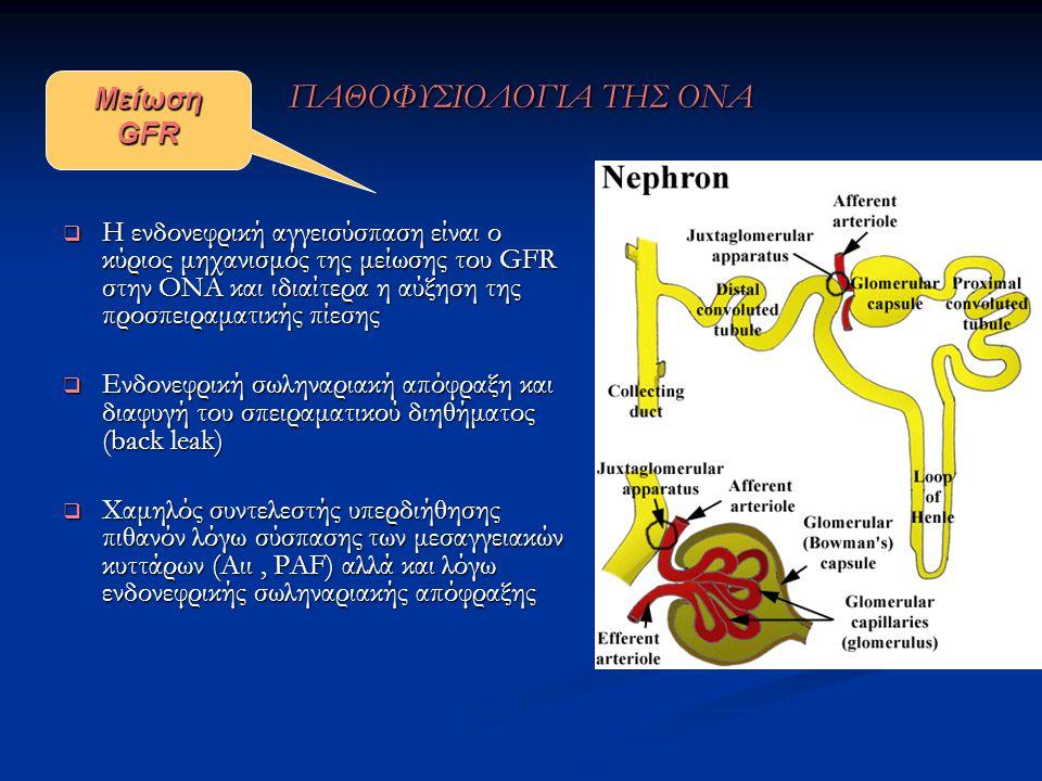 ΠΑΘΟΦΥΣΙΟΛΟΓΙΑ ΤΗΣ ΟΝΑ  Η ενδονεφρική αγγεισύσπαση είναι ο κύριος μηχανισμός της μείωσης του GFR στην ΟΝΑ και ιδιαίτερα η αύξηση της προσπειραματικής πίεσης  Ενδονεφρική σωληναριακή απόφραξη και διαφυγή του σπειραματικού διηθήματος (back leak)  Χαμηλός συντελεστής υπερδιήθησης πιθανόν λόγω σύσπασης των μεσαγγειακών κυττάρων (Aιι, PAF) αλλά και λόγω ενδονεφρικής σωληναριακής απόφραξης Mείωση GFR