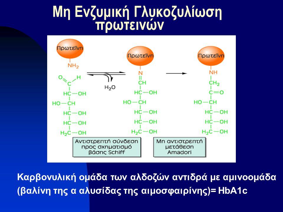 Μη Ενζυμική Γλυκοζυλίωση πρωτεινών Καρβονυλική ομάδα των αλδοζών αντιδρά με αμινοομάδα (βαλίνη της α αλυσίδας της αιμοσφαιρίνης)= HbA1c