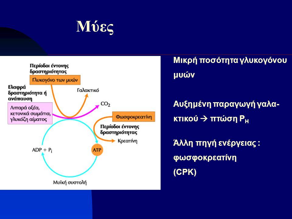 Μύες Μικρή ποσότητα γλυκογόνου μυών Αυξημένη παραγωγή γαλα- κτικού  πτώση Ρ Η Άλλη πηγή ενέργειας : φωσφοκρεατίνη (CPK)