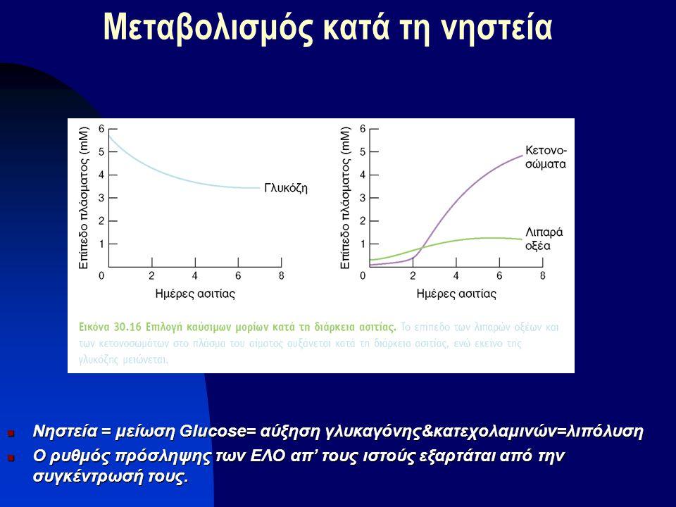Μεταβολισμός κατά τη νηστεία Νηστεία = μείωση Glucose= αύξηση γλυκαγόνης&κατεχολαμινών=λιπόλυση Νηστεία = μείωση Glucose= αύξηση γλυκαγόνης&κατεχολαμι