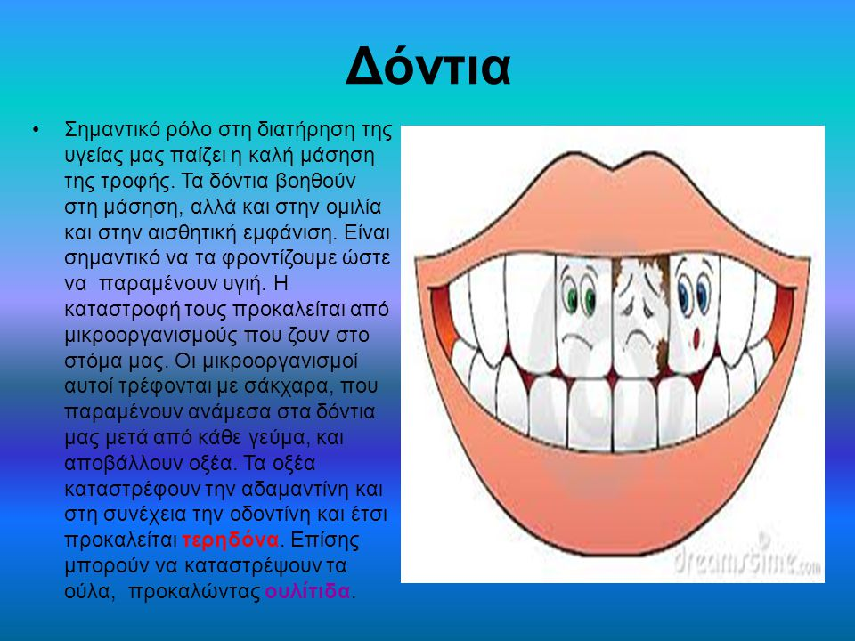 Δόντια Σημαντικό ρόλο στη διατήρηση της υγείας μας παίζει η καλή μάσηση της τροφής. Τα δόντια βοηθούν στη μάσηση, αλλά και στην ομιλία και στην αισθητ