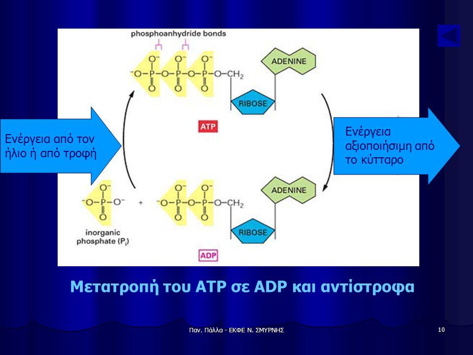 Παν. Πάλλα - ΕΚΦΕ Ν. ΣΜΥΡΝΗΣ 10 Μετατροπή του ATP σε ADP και αντίστροφα Ενέργεια από τον ήλιο ή από τροφή Ενέργεια αξιοποιήσιμη από το κύτταρο