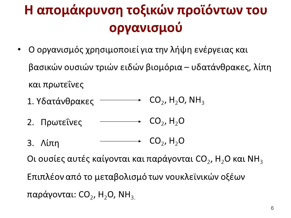 Οι ουσίες αυτές καίγονται και παράγονται CO 2, H 2 O και NH 3 CO 2, H 2 O CO 2, H 2 O, NH 3 Επιπλέον από το μεταβολισμό των νουκλεϊνικών οξέων παράγον
