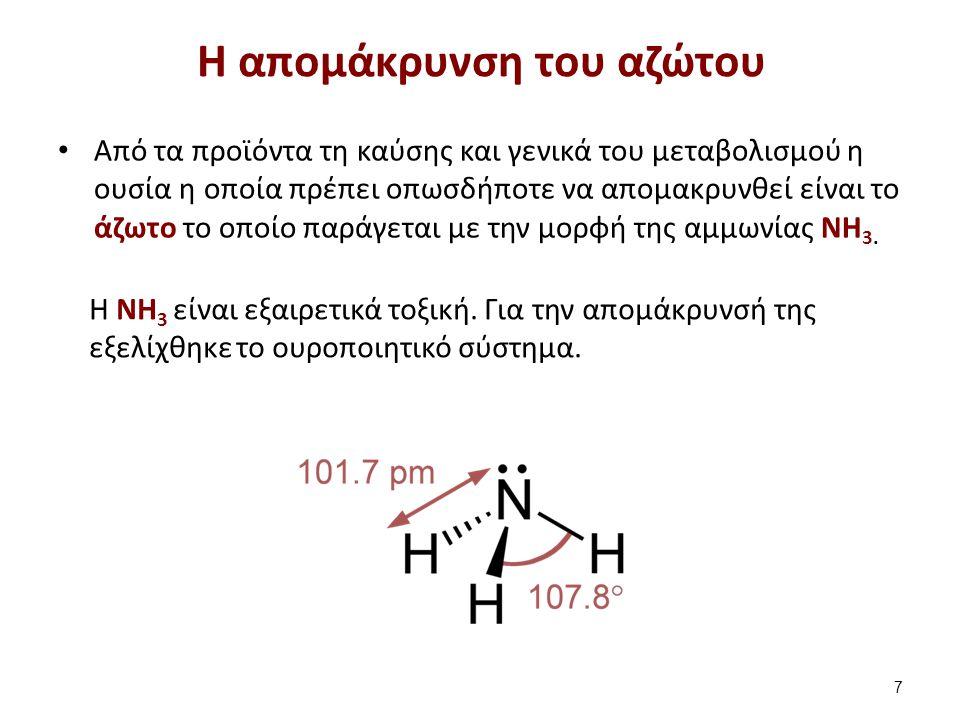 Η ΝΗ 3 είναι εξαιρετικά τοξική. Για την απομάκρυνσή της εξελίχθηκε το ουροποιητικό σύστημα. H απομάκρυνση του αζώτου Από τα προϊόντα τη καύσης και γεν