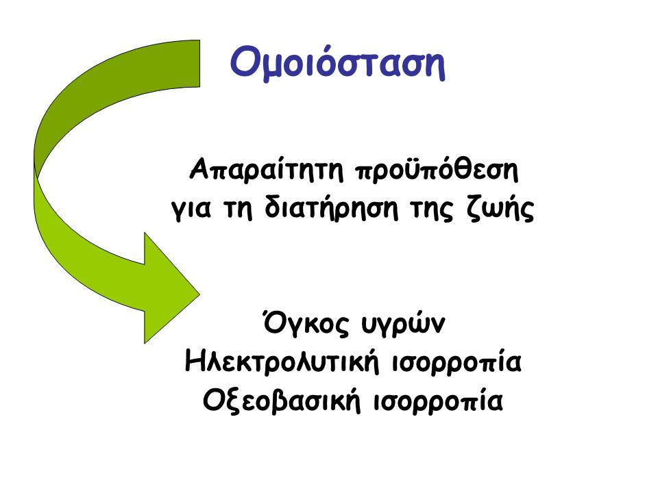 Ομοιόσταση Απαραίτητη προϋπόθεση για τη διατήρηση της ζωής Όγκος υγρών Ηλεκτρολυτική ισορροπία Οξεοβασική ισορροπία