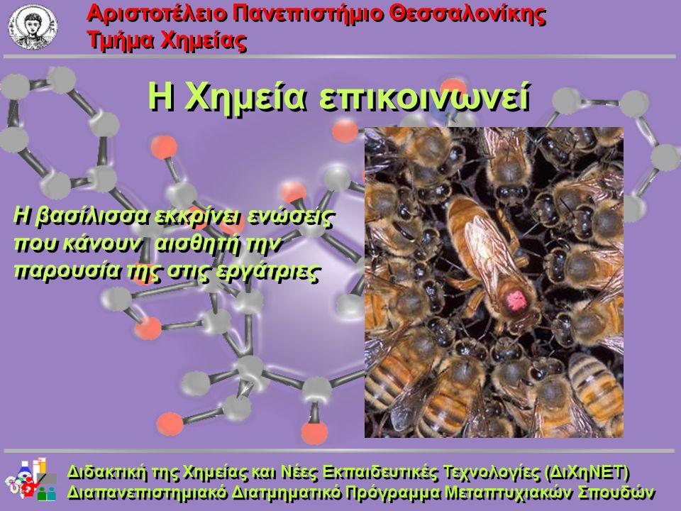 Aριστοτέλειο Πανεπιστήμιο Θεσσαλονίκης Τμήμα Χημείας Η Χημεία επικοινωνεί Διδακτική της Χημείας και Νέες Εκπαιδευτικές Τεχνολογίες (ΔιΧηΝΕΤ) Διαπανεπι