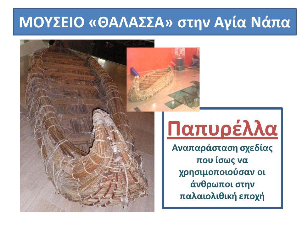 ΜΟΥΣΕΙΟ «ΘΑΛΑΣΣΑ» στην Αγία Νάπα Παπυρέλλα Αναπαράσταση σχεδίας που ίσως να χρησιμοποιούσαν οι άνθρωποι στην παλαιολιθική εποχή