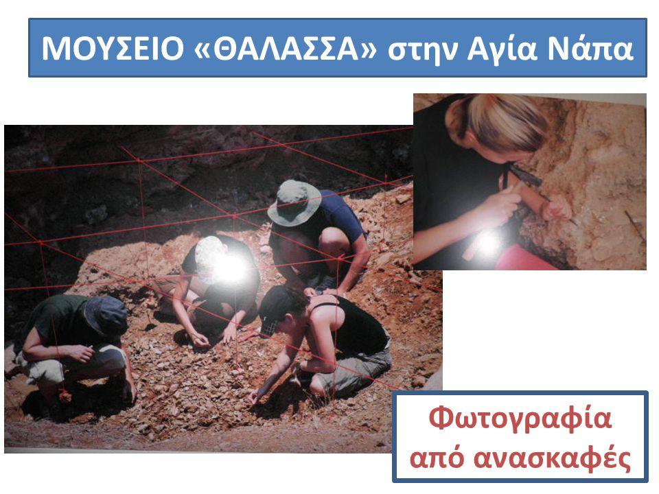 ΜΟΥΣΕΙΟ «ΘΑΛΑΣΣΑ» στην Αγία Νάπα Φωτογραφία από ανασκαφές