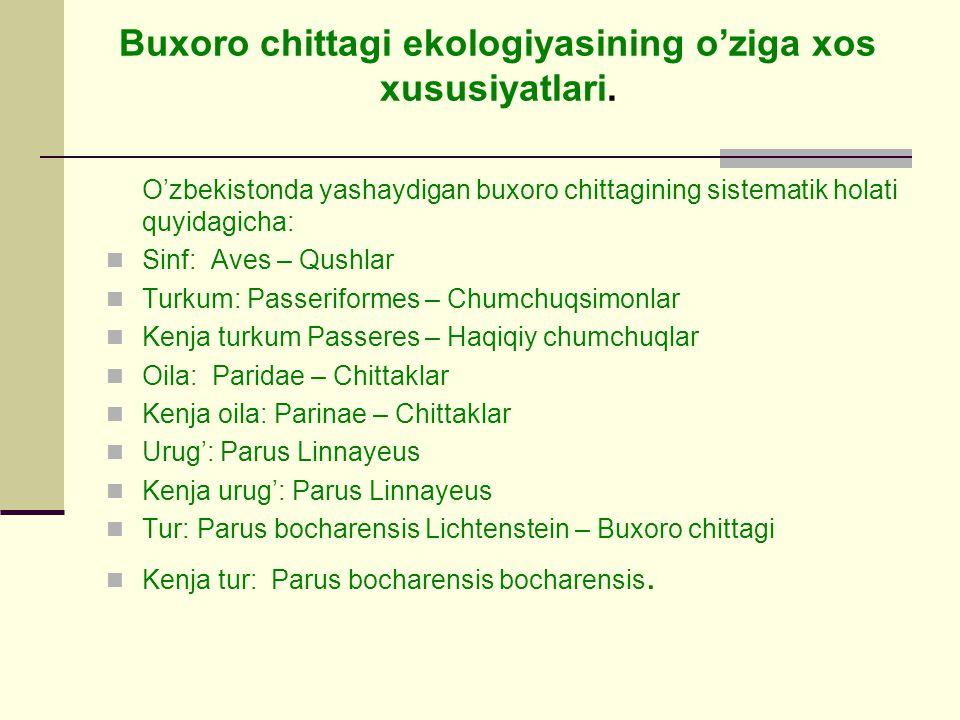 Buxoro chittagi ekologiyasining o'ziga xos xususiyatlari.