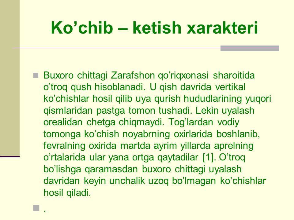 Ko'chib – ketish xarakteri Buxoro chittagi Zarafshon qo'riqxonasi sharoitida o'troq qush hisoblanadi.