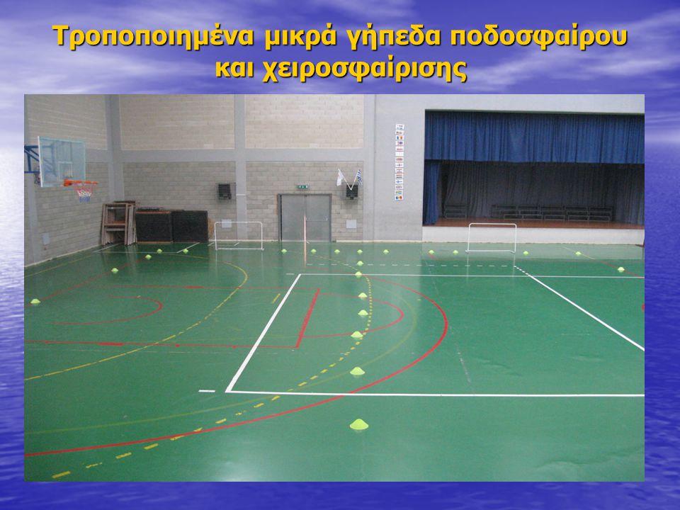 Τροποποιημένα μικρά γήπεδα ποδοσφαίρου και χειροσφαίρισης
