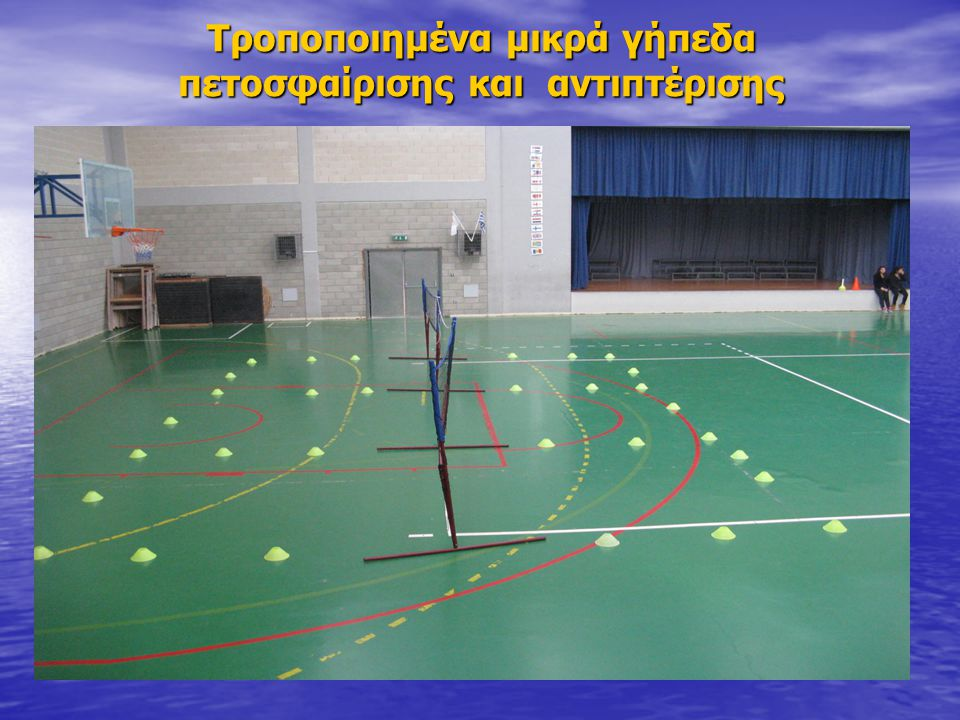 Τροποποιημένα μικρά γήπεδα πετοσφαίρισης και αντιπτέρισης