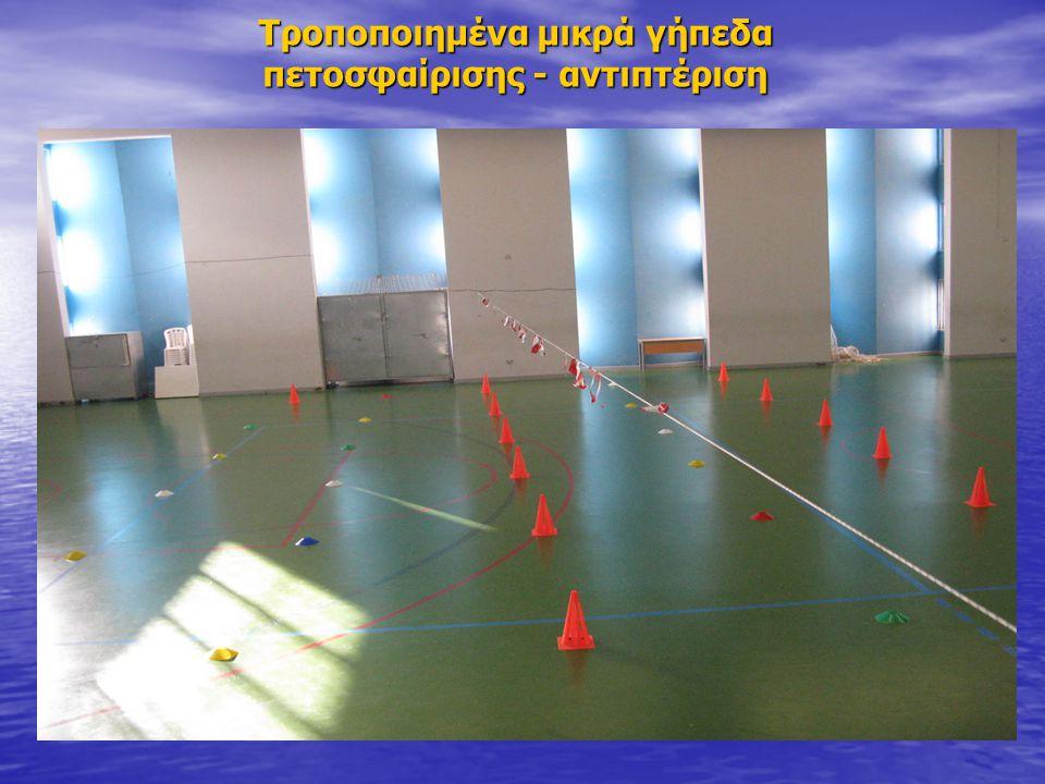 Τροποποιημένα μικρά γήπεδα πετοσφαίρισης - αντιπτέριση