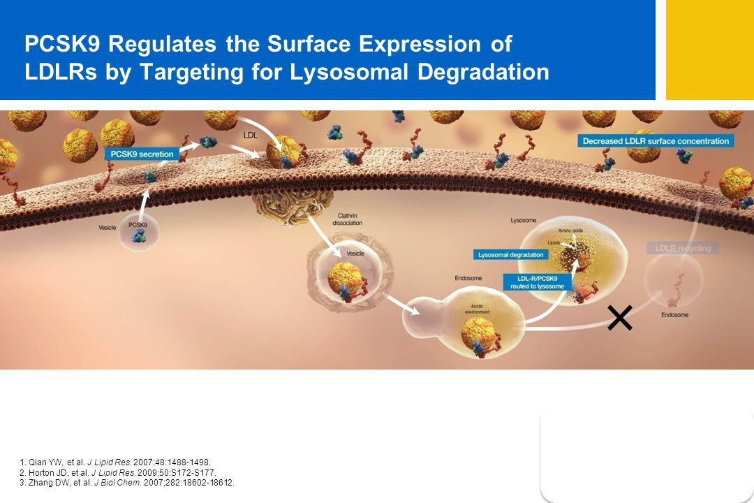 PCSK9 Regulates the Surface Expression of LDLRs by Targeting for Lysosomal Degradation 1.