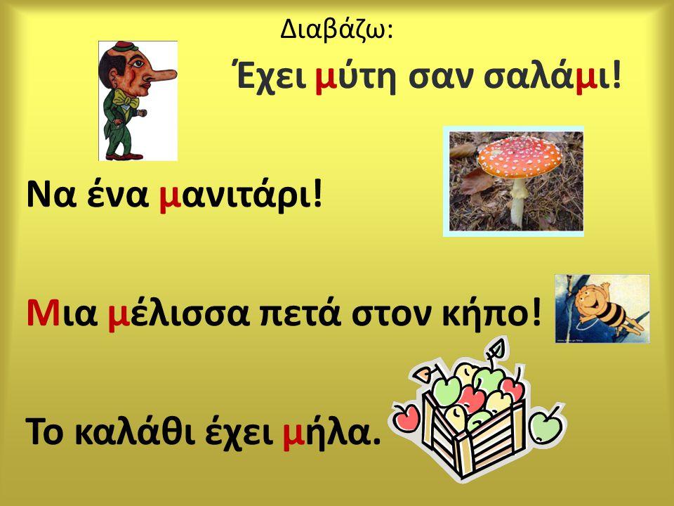 Διαβάζω: Έχει μύτη σαν σαλάμι! Να ένα μανιτάρι! Μια μέλισσα πετά στον κήπο! Το καλάθι έχει μήλα.