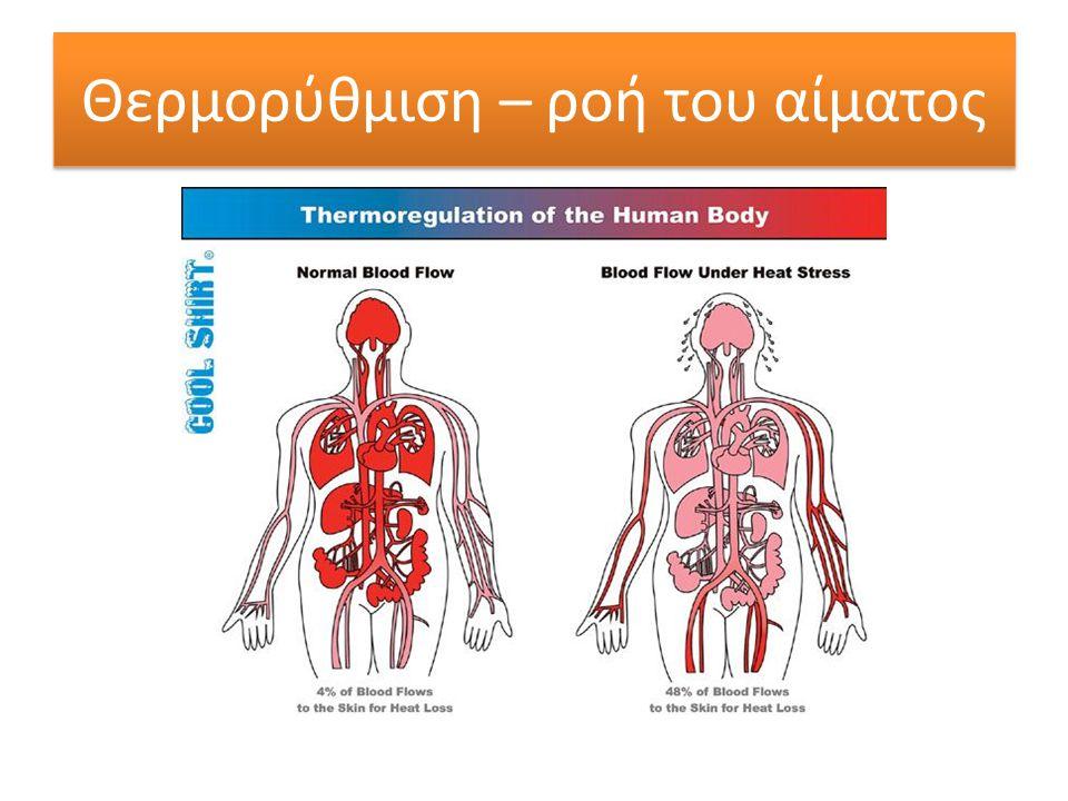 Θερμορύθμιση – ροή του αίματος