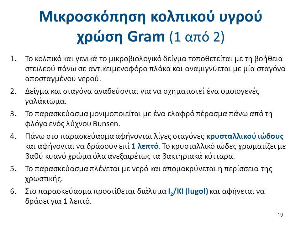 Μικροσκόπηση κολπικού υγρού χρώση Gram (1 από 2) 19 1.To κολπικό και γενικά το μικροβιολογικό δείγμα τοποθετείται με τη βοήθεια στειλεού πάνω σε αντικ