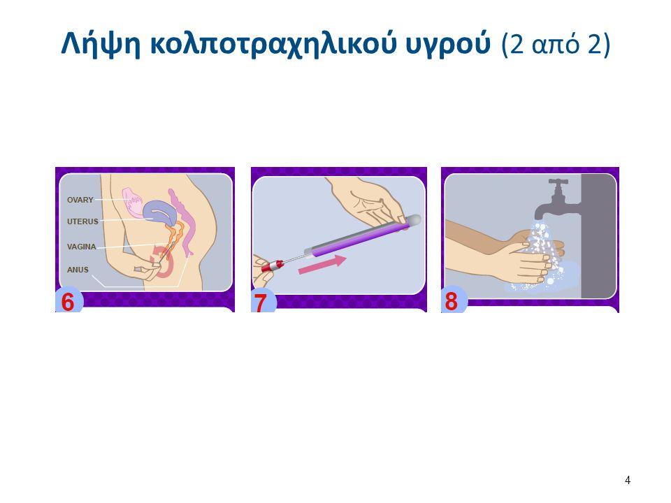 Λήψη κολποτραχηλικού υγρού (2 από 2) 4