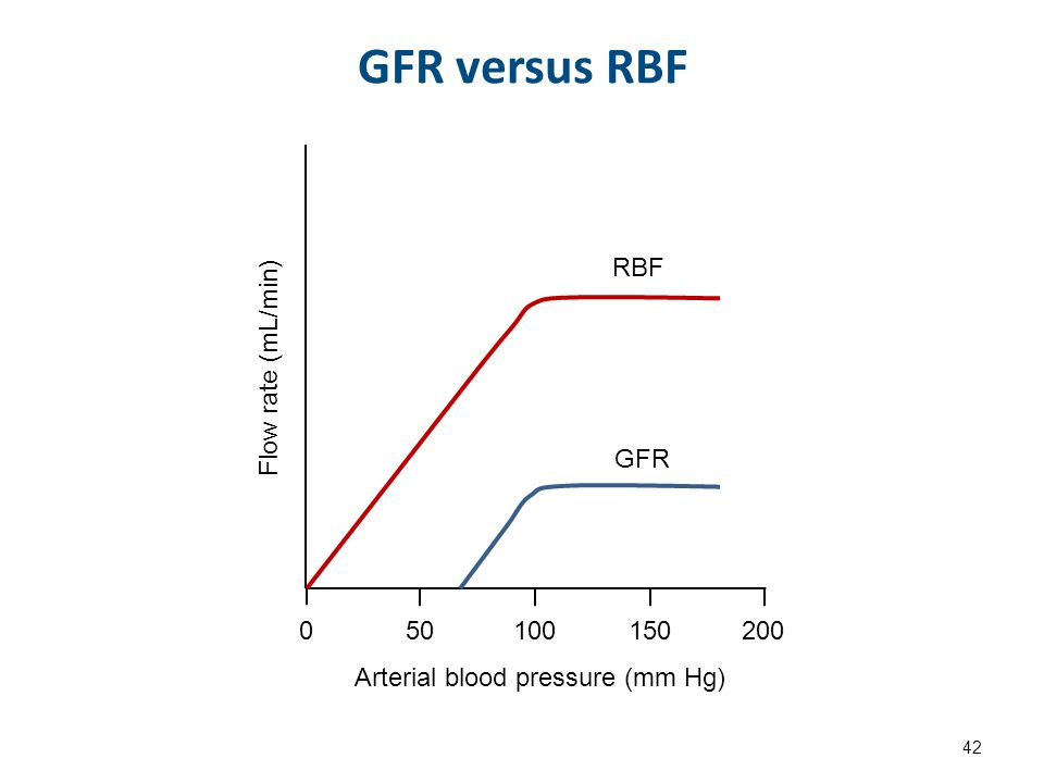 GFR versus RBF 42 Flow rate (mL/min) Arterial blood pressure (mm Hg) 050100150200 RBF GFR