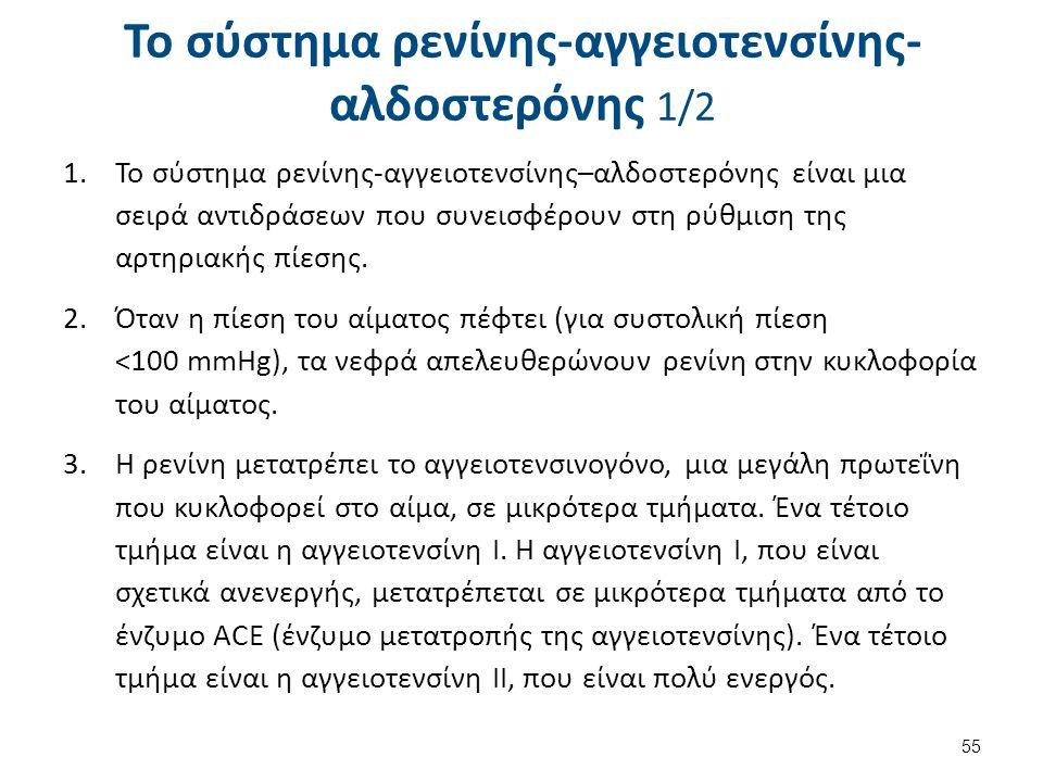 Το σύστημα ρενίνης-αγγειοτενσίνης- αλδοστερόνης 1/2 1.Το σύστημα ρενίνης-αγγειοτενσίνης–αλδοστερόνης είναι μια σειρά αντιδράσεων που συνεισφέρουν στη