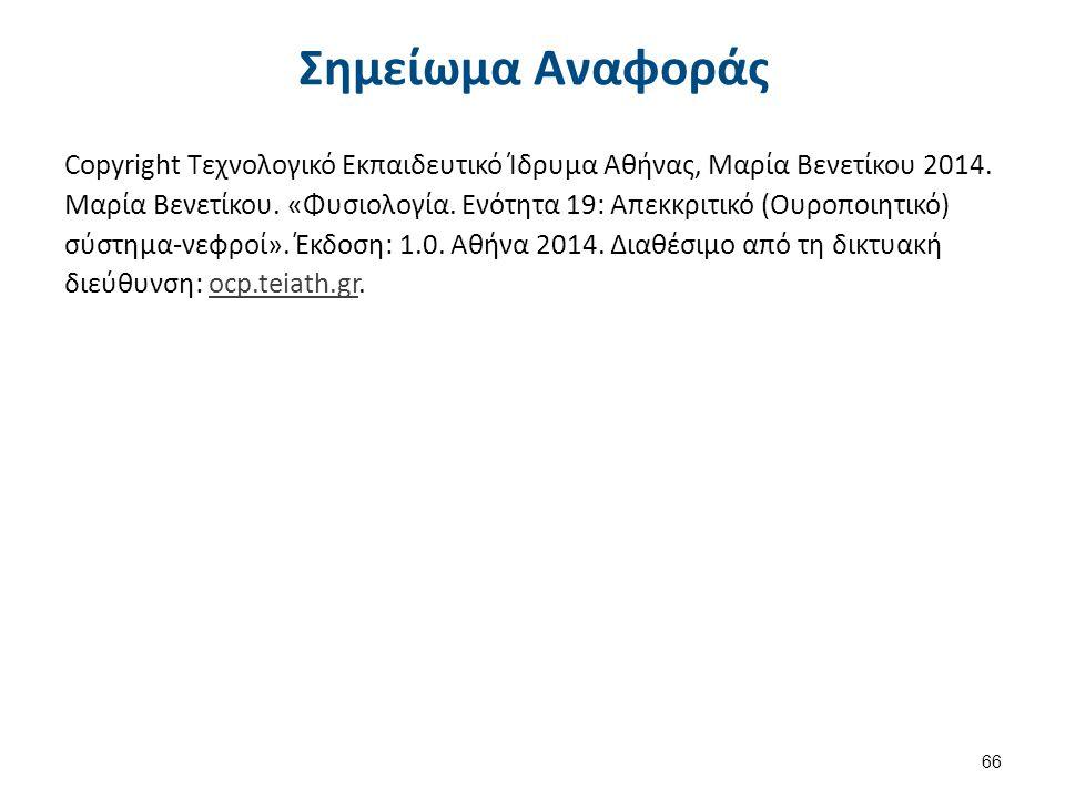 Σημείωμα Αναφοράς Copyright Τεχνολογικό Εκπαιδευτικό Ίδρυμα Αθήνας, Μαρία Βενετίκου 2014. Μαρία Βενετίκου. «Φυσιολογία. Ενότητα 19: Απεκκριτικό (Ουροπ
