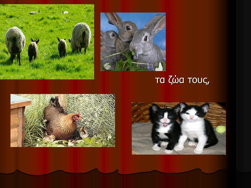 τα ζώα τους,