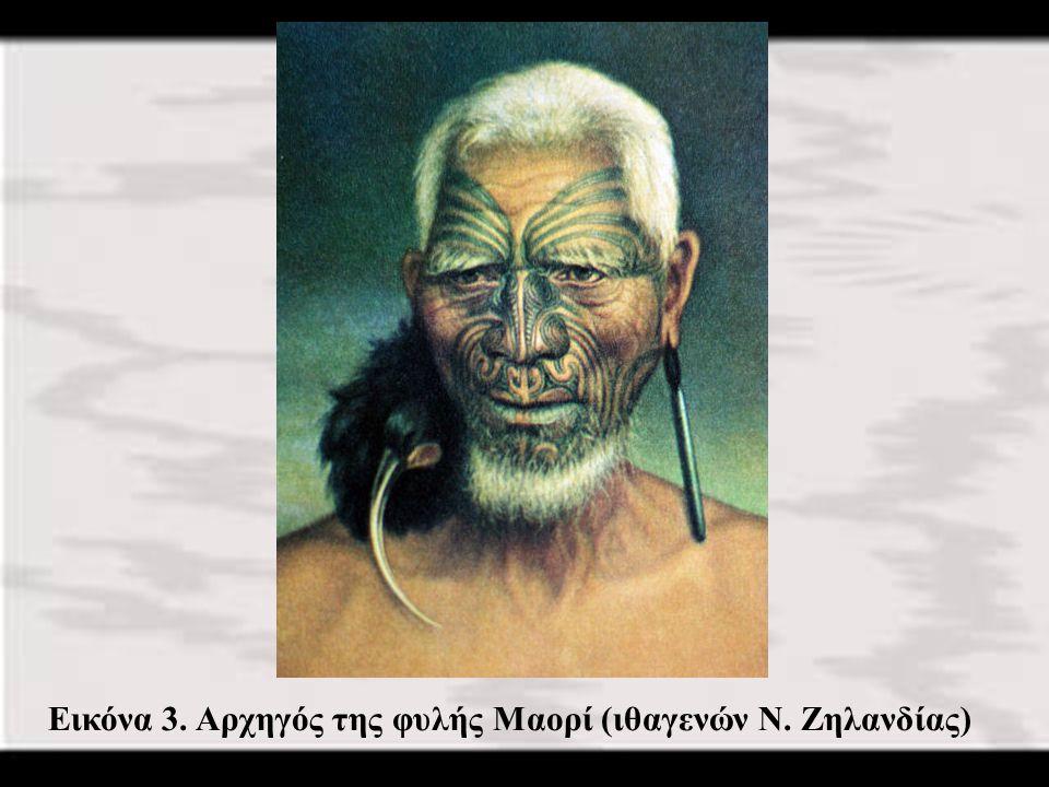17 Εικόνα 3. Αρχηγός της φυλής Μαορί (ιθαγενών Ν. Ζηλανδίας)