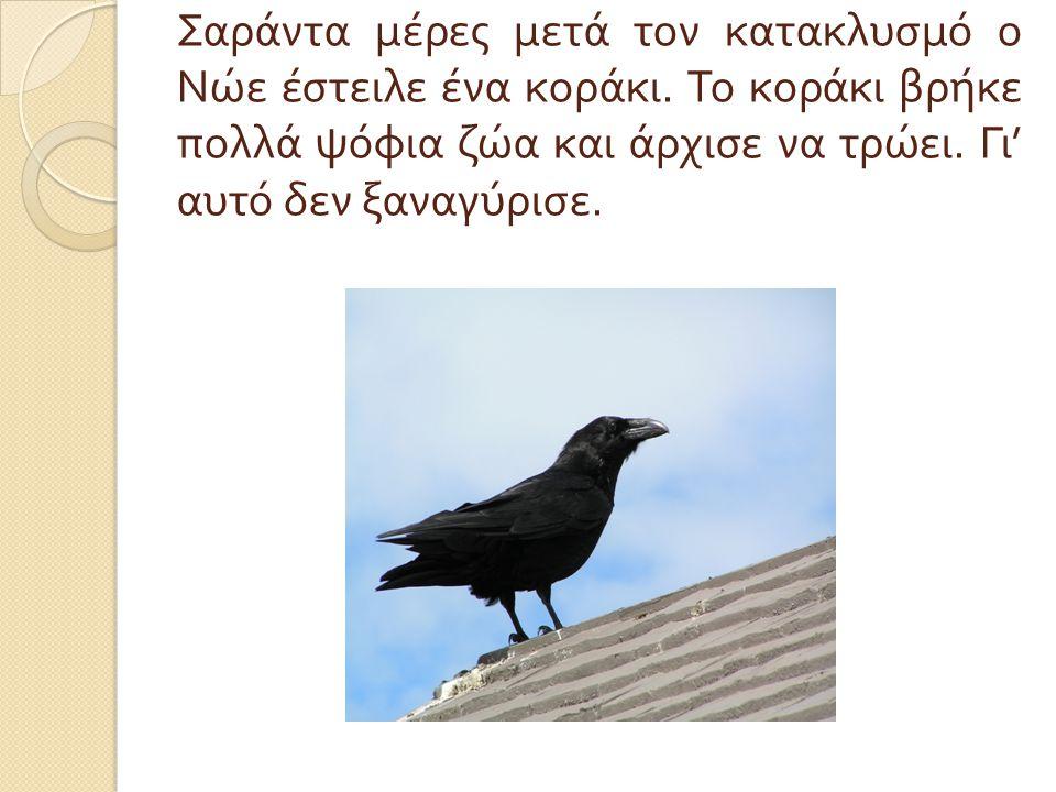 Σαράντα μέρες μετά τον κατακλυσμό ο Νώε έστειλε ένα κοράκι. Το κοράκι βρήκε πολλά ψόφια ζώα και άρχισε να τρώει. Γι ' αυτό δεν ξαναγύρισε.