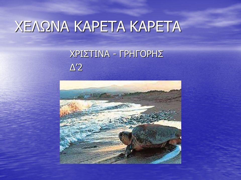 ΧΕΛΩΝΑ ΚΑΡΕΤΑ ΚΑΡΕΤΑ ΧΡΙΣΤΙΝΑ - ΓΡΗΓΟΡΗΣ Δ'2