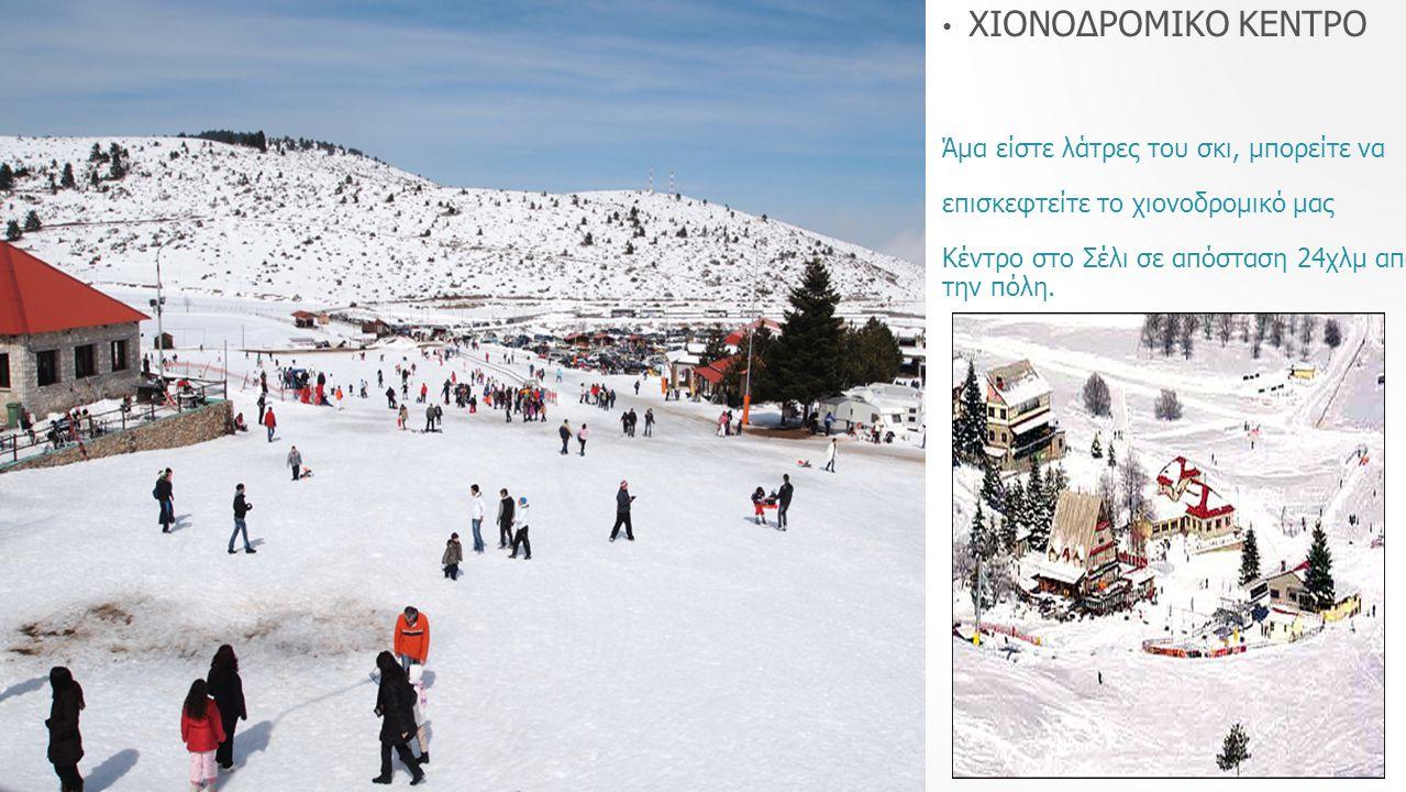 ΧΙΟΝΟΔΡΟΜΙΚΟ ΚΕΝΤΡΟ Άμα είστε λάτρες του σκι, μπορείτε να επισκεφτείτε το χιονοδρομικό μας Κέντρο στο Σέλι σε απόσταση 24χλμ από την πόλη.