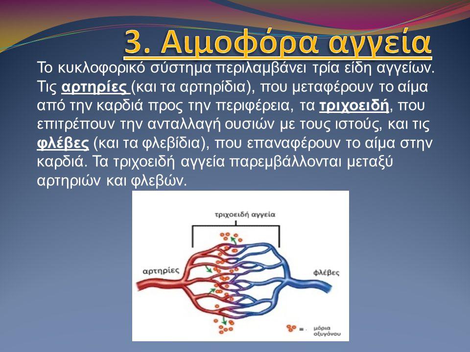 Το κυκλοφορικό σύστημα περιλαμβάνει τρία είδη αγγείων. Τις αρτηρίες (και τα αρτηρίδια), που μεταφέρουν το αίμα από την καρδιά προς την περιφέρεια, τα