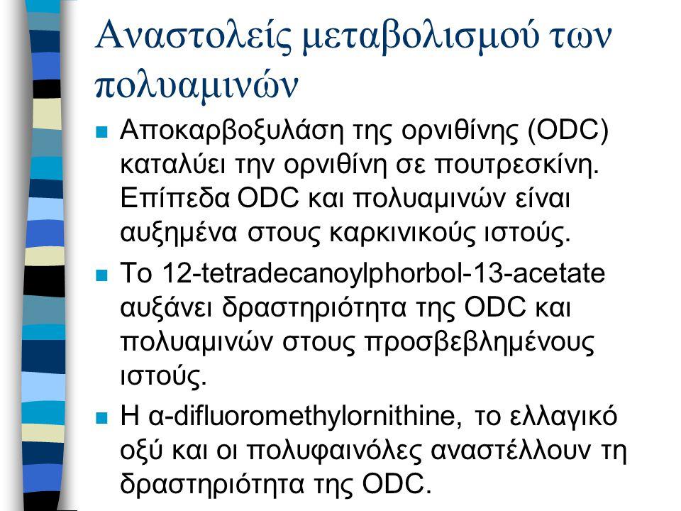 Αναστολείς μεταβολισμού των πολυαμινών n Αποκαρβοξυλάση της ορνιθίνης (ODC) καταλύει την ορνιθίνη σε πουτρεσκίνη.