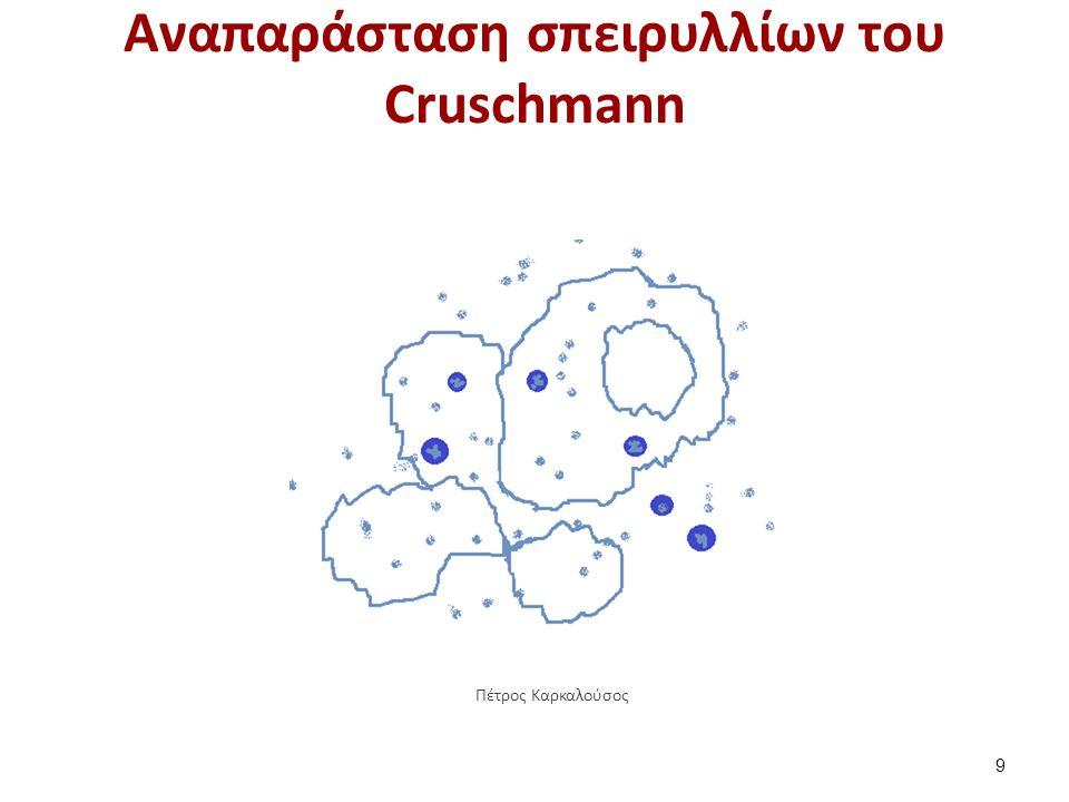 Aναπαράσταση σπειρυλλίων του Cruschmann 9 Πέτρος Καρκαλούσος