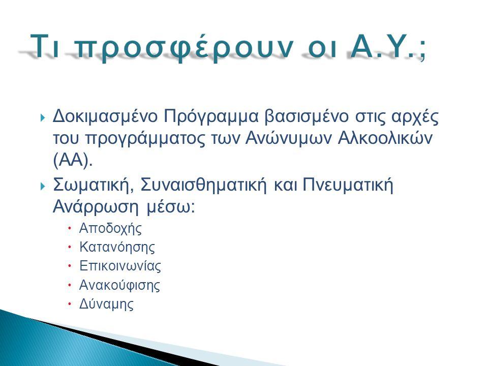  Δοκιμασμένο Πρόγραμμα βασισμένο στις αρχές του προγράμματος των Ανώνυμων Αλκοολικών (ΑΑ).