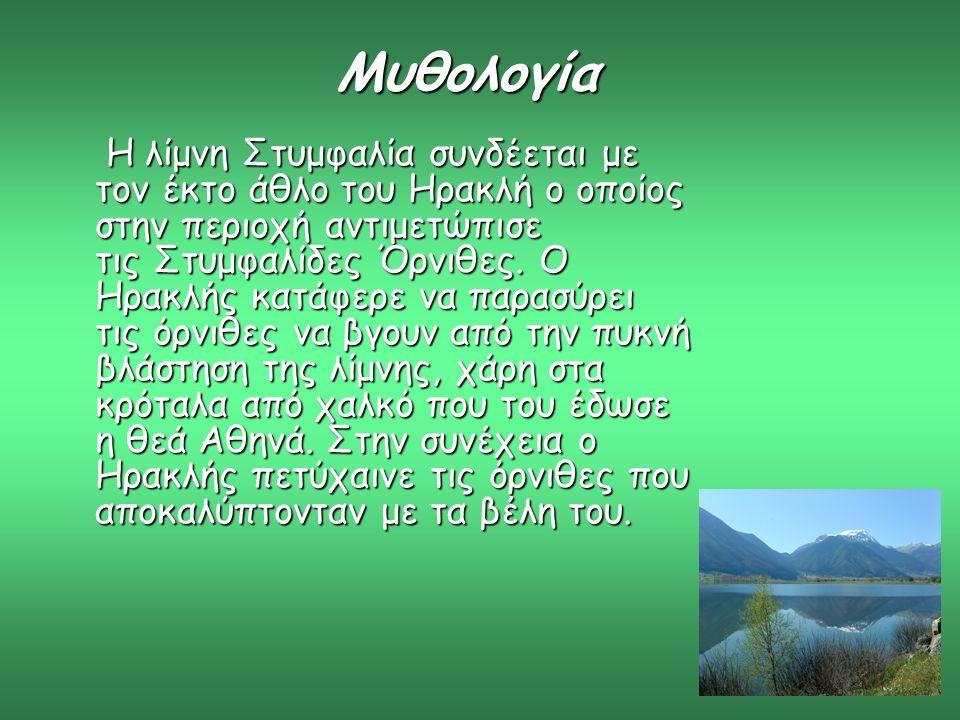 Μυθολογία Η λίμνη Στυμφαλία συνδέεται με τον έκτο άθλο του Ηρακλή ο οποίος στην περιοχή αντιμετώπισε τις Στυμφαλίδες Όρνιθες. Ο Ηρακλής κατάφερε να πα