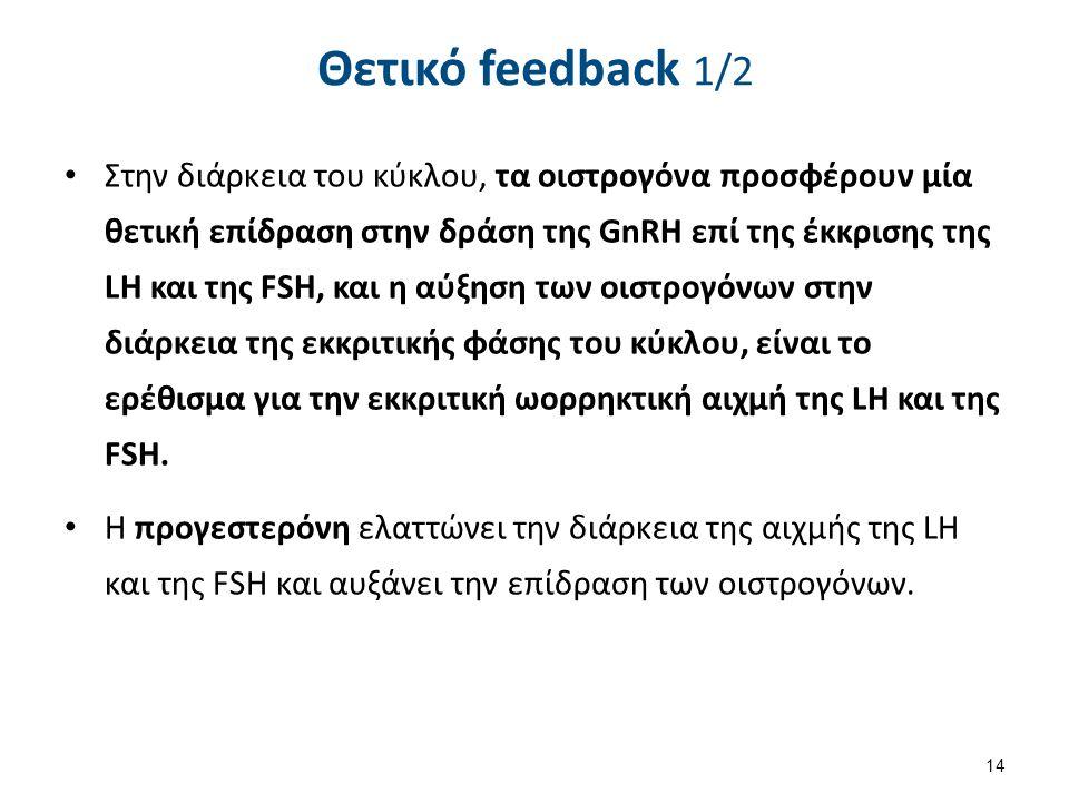 Θετικό feedback 1/2 Στην διάρκεια του κύκλου, τα οιστρογόνα προσφέρουν μία θετική επίδραση στην δράση της GnRH επί της έκκρισης της LH και της FSH, κα