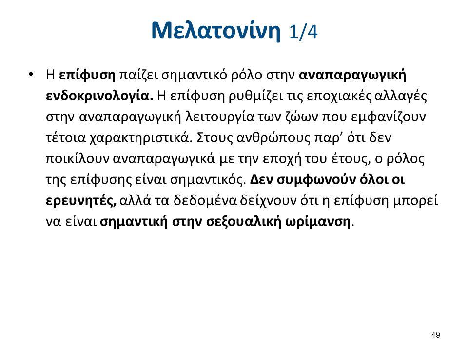 Μελατονίνη 1/4 Η επίφυση παίζει σημαντικό ρόλο στην αναπαραγωγική ενδοκρινολογία. Η επίφυση ρυθμίζει τις εποχιακές αλλαγές στην αναπαραγωγική λειτουργ