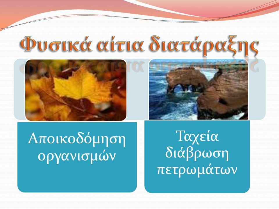 Αποικοδόμηση οργανισμών Ταχεία διάβρωση πετρωμάτων