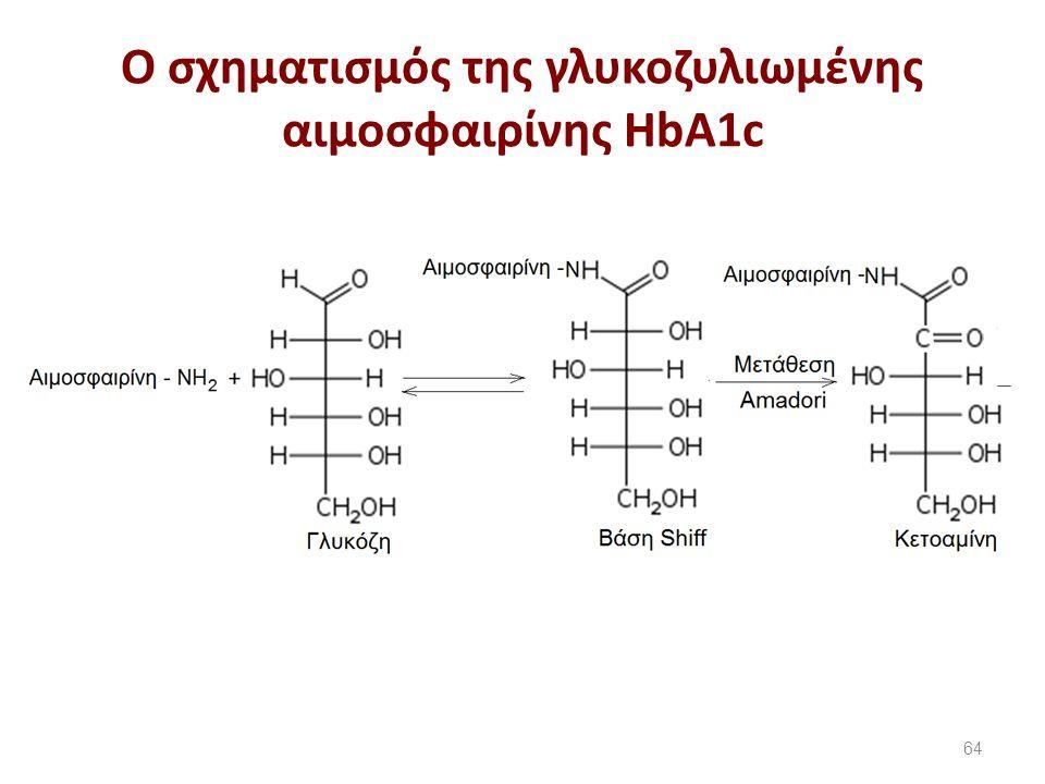 O σχηματισμός της γλυκοζυλιωμένης αιμοσφαιρίνης HbA1c 64