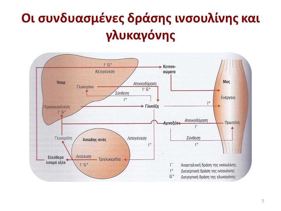 Οι συνδυασμένες δράσης ινσουλίνης και γλυκαγόνης 7