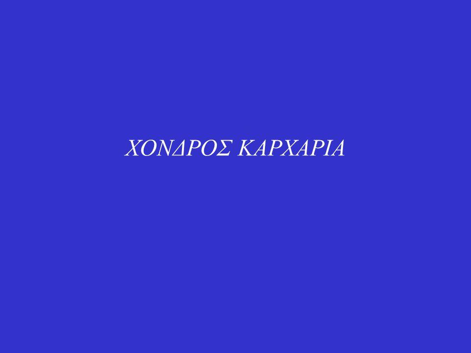 ΧΟΝΔΡΟΣ ΚΑΡΧΑΡΙΑ
